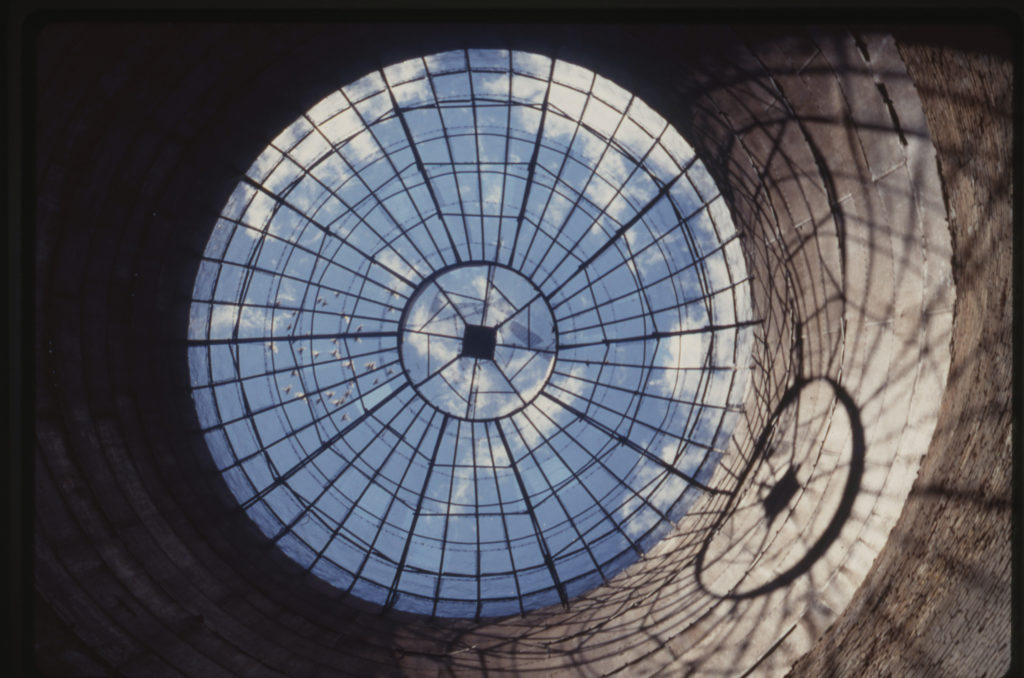 silo-birds-molinari5962001